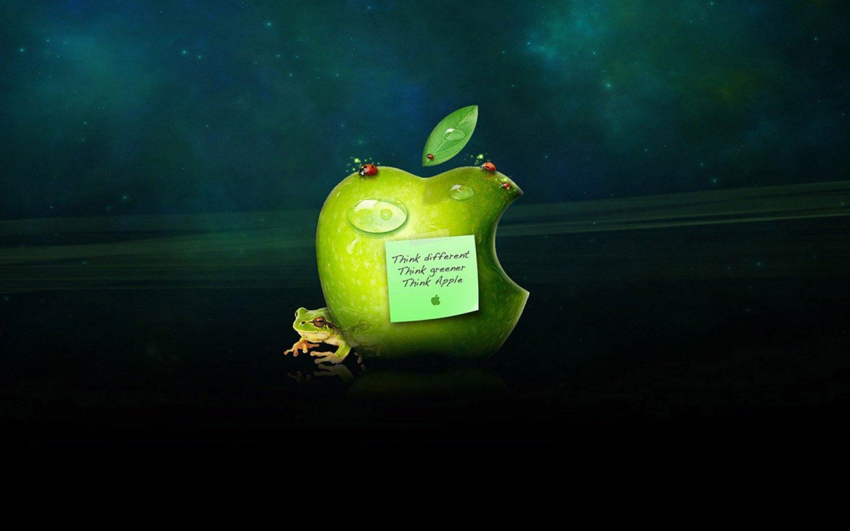 Обои Apple logo and frog 1680x1050