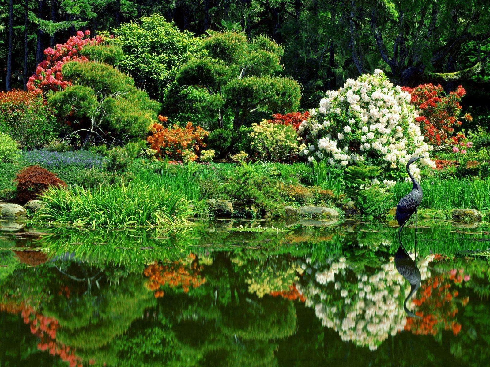 Азиатский сад обои 1600x1200.  Фруктовый Сад Обои