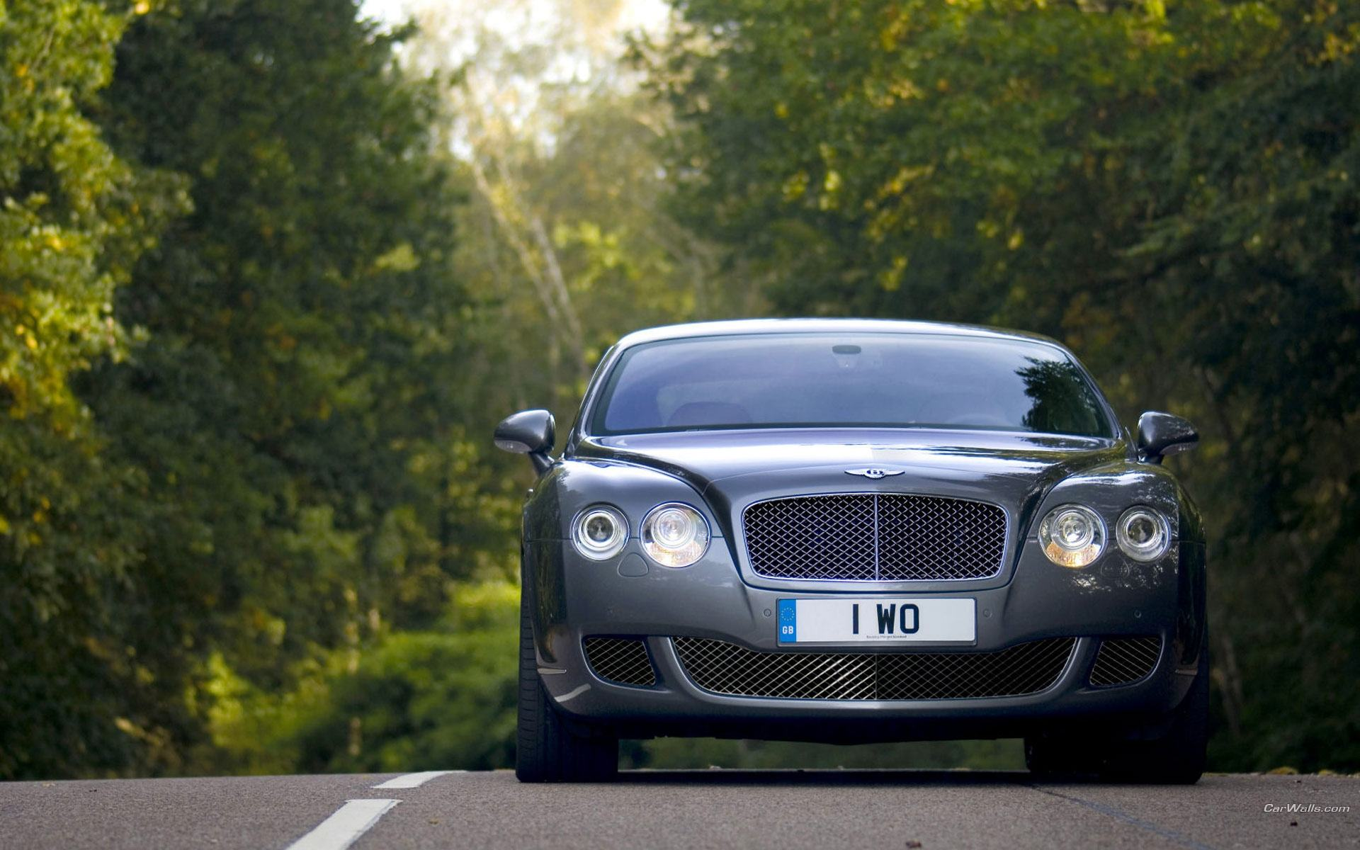 Обои Bentley Continental GT Silver 1920x1200