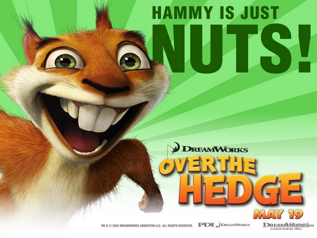 Бешеная белка screwball squirrel всё о фильме
