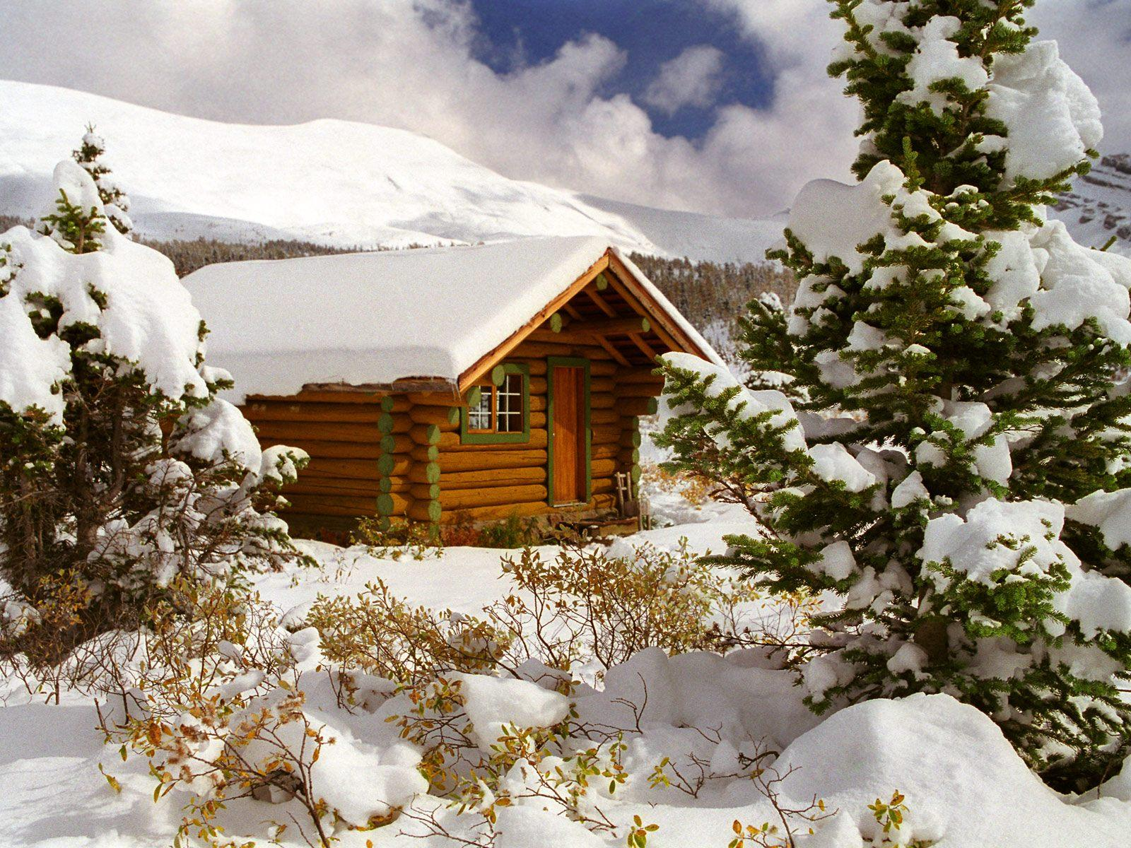 Домик в снегу в зимнем лесу обои 1600x1200