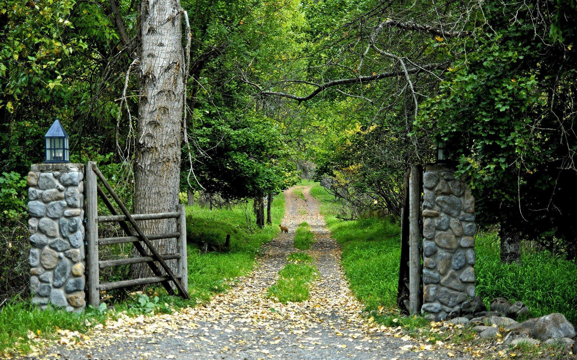 Обои Early autumn 1920x1200