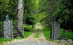 Early autumn / 1920x1200