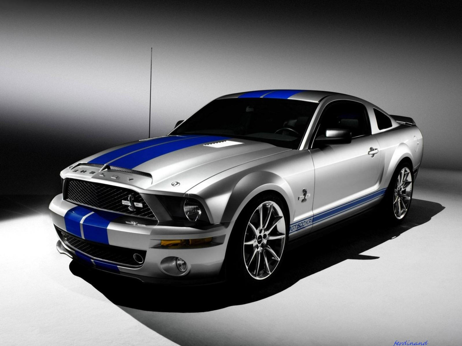 Обои Ford Mustang Shelby Cobra 2008 1600x1200