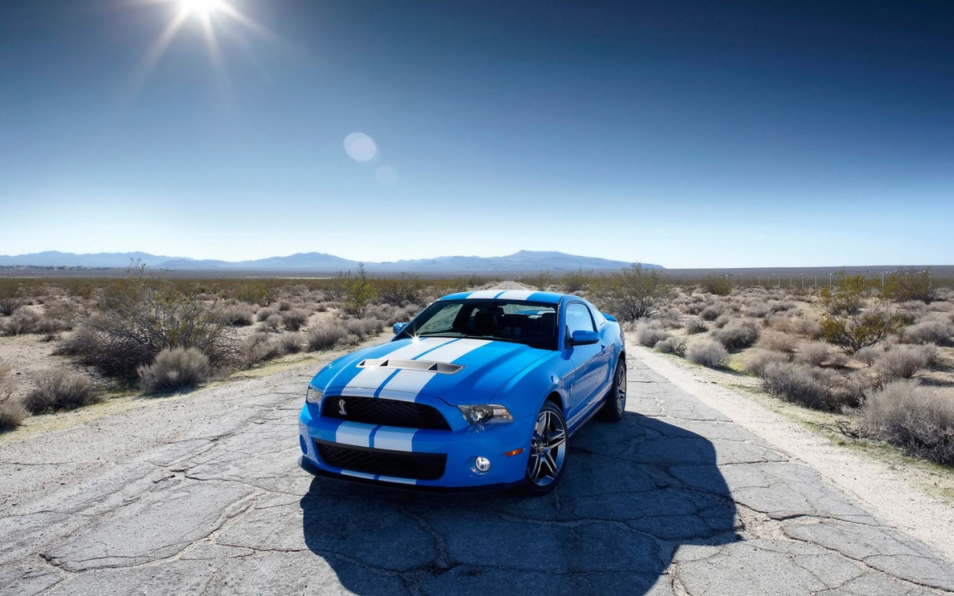 Обои Ford Shelby GT500 1920x1200