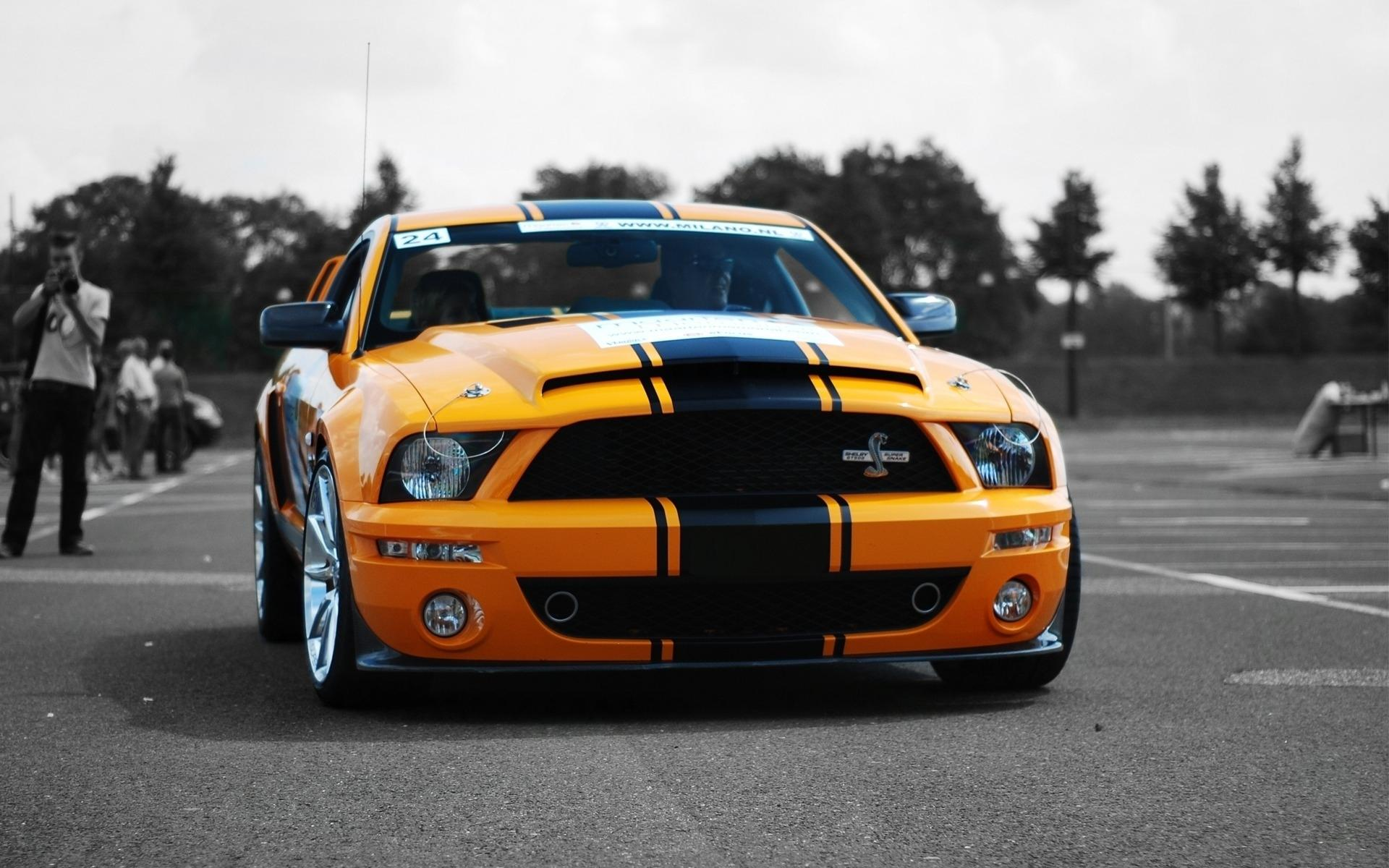 ���� Ford Shelby GT500 � ������ ������� 1920x1200