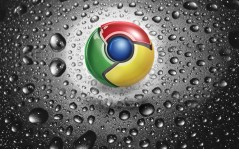 Google chrome / 1600x1200