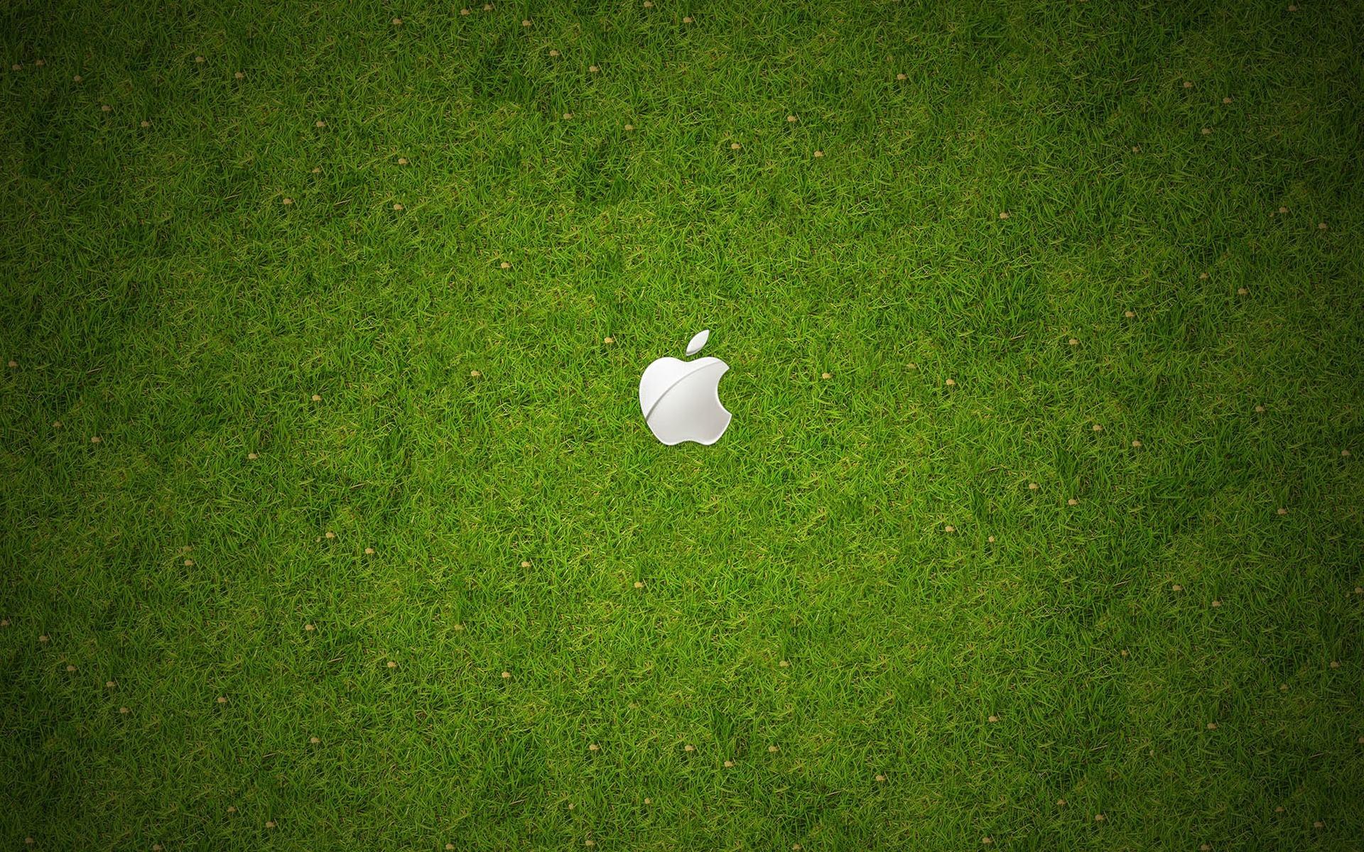 apple обои: