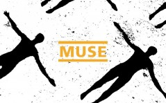 Muse / 1680x1050