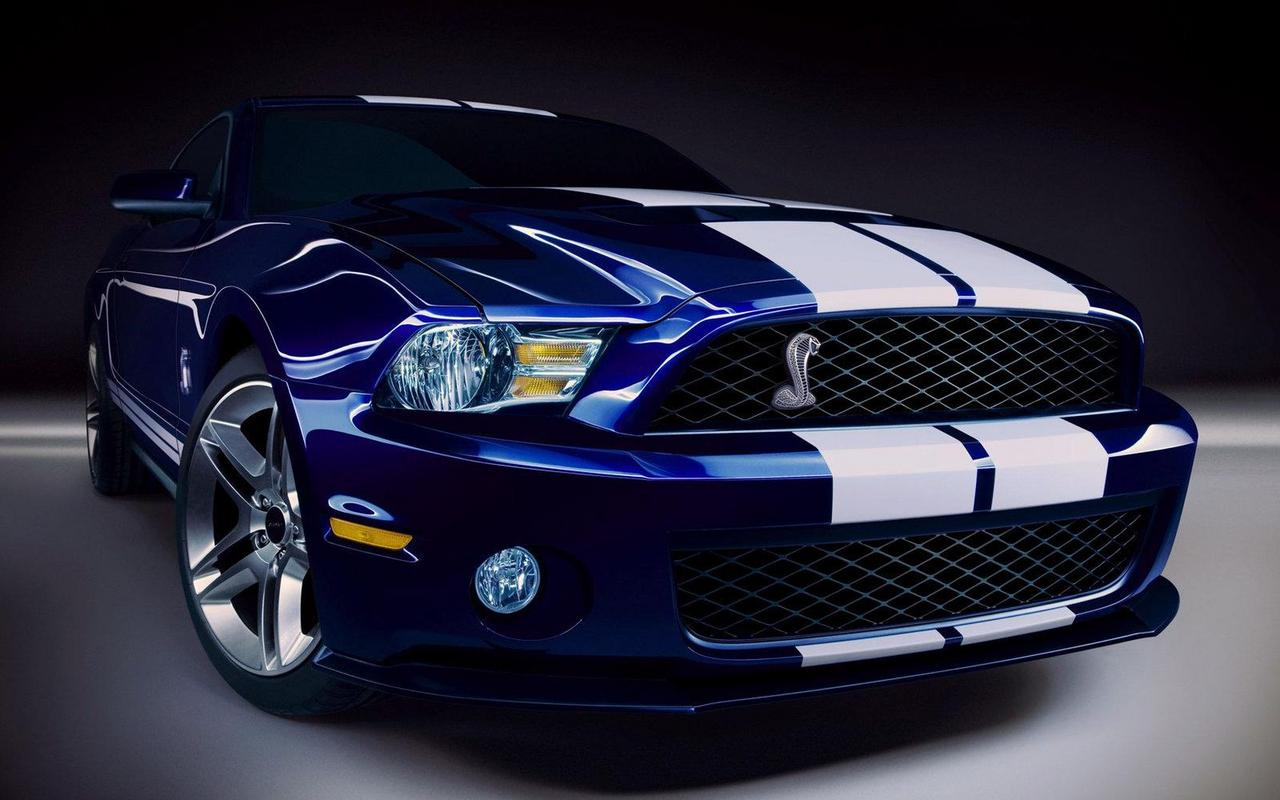 Обои NEW FORD MUSTANG GT 500 1280x800