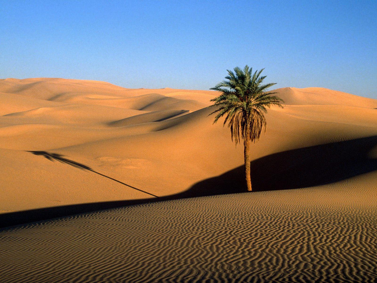 Фото у далекій пустелі 3 фотография