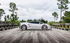 Performance Lamborghini Gallardo / 2560x1600