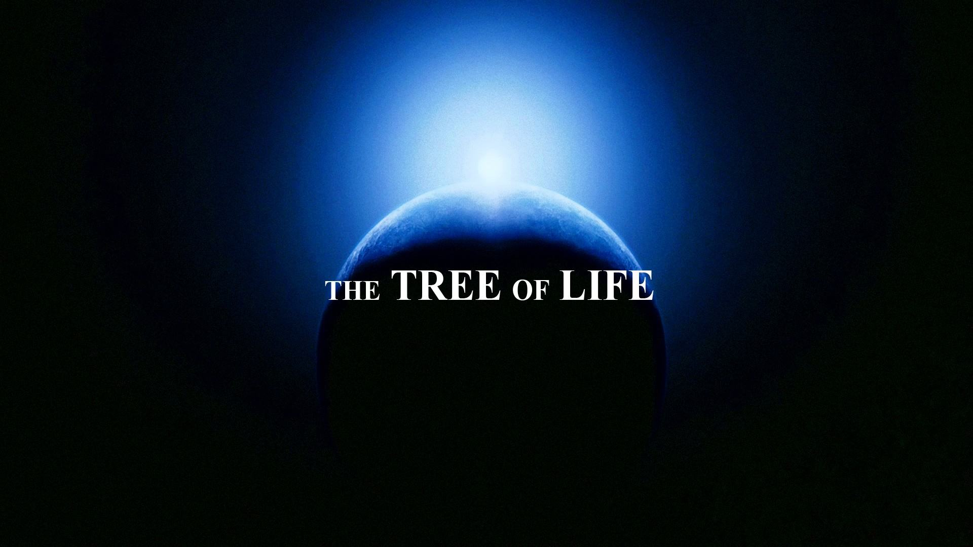 ���� �� ������ The Tree of Life 1920x1080