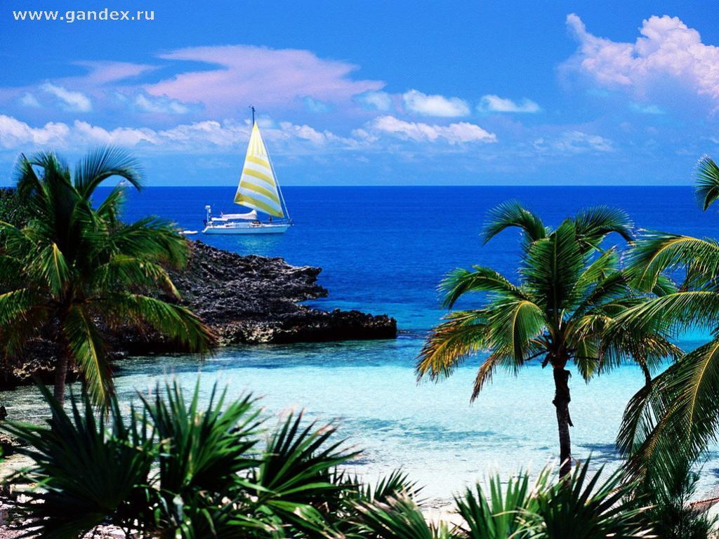 Скачать обои рай пальмы море небо и
