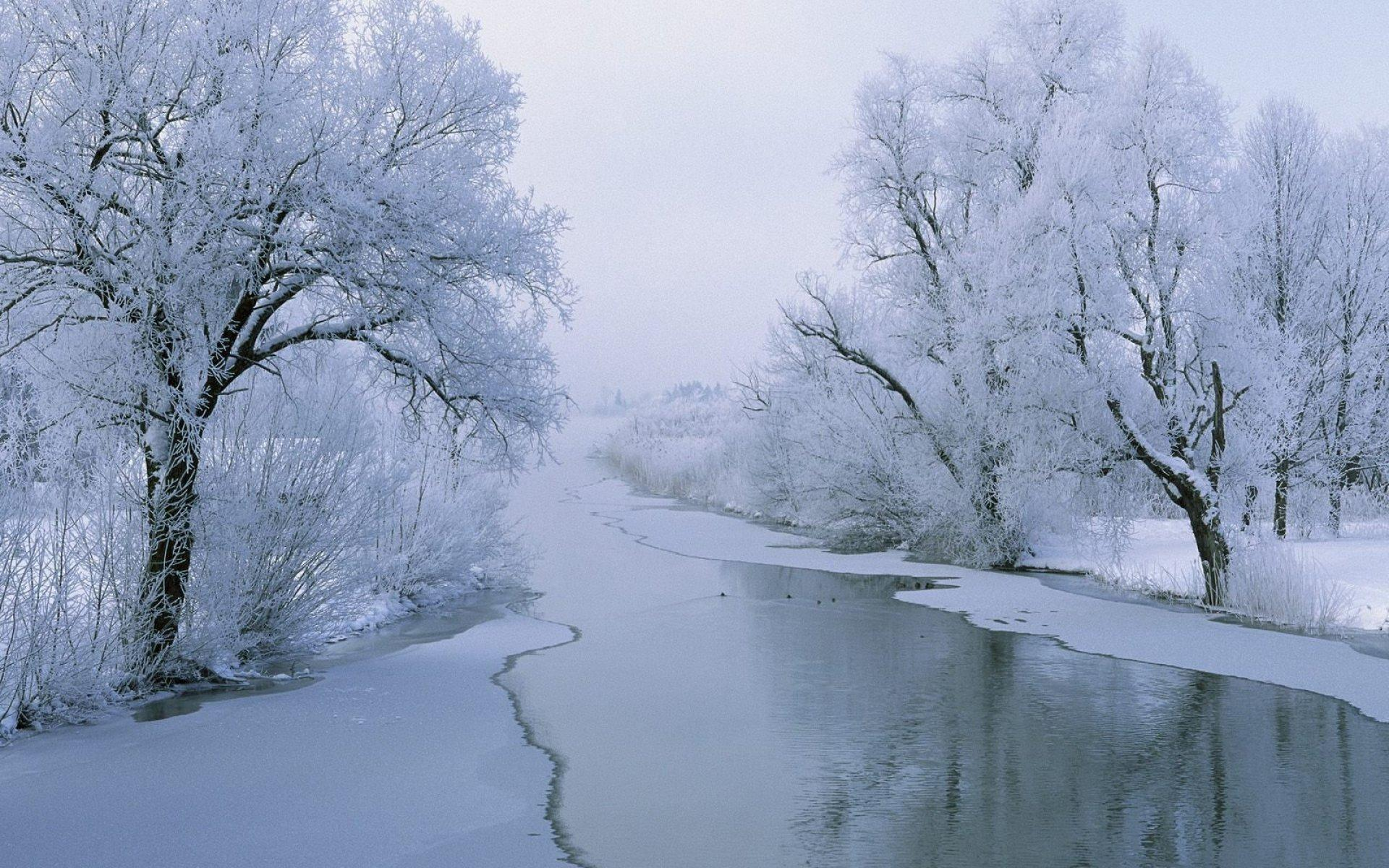 Обои River in winter 1920x1200