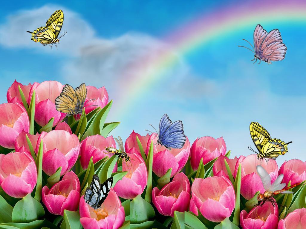 Скачать обои розовые тюльпаны бабочки