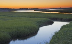 Salt Marsh at Sunrise, Cape Cod, Massachusetts / 1600x1200