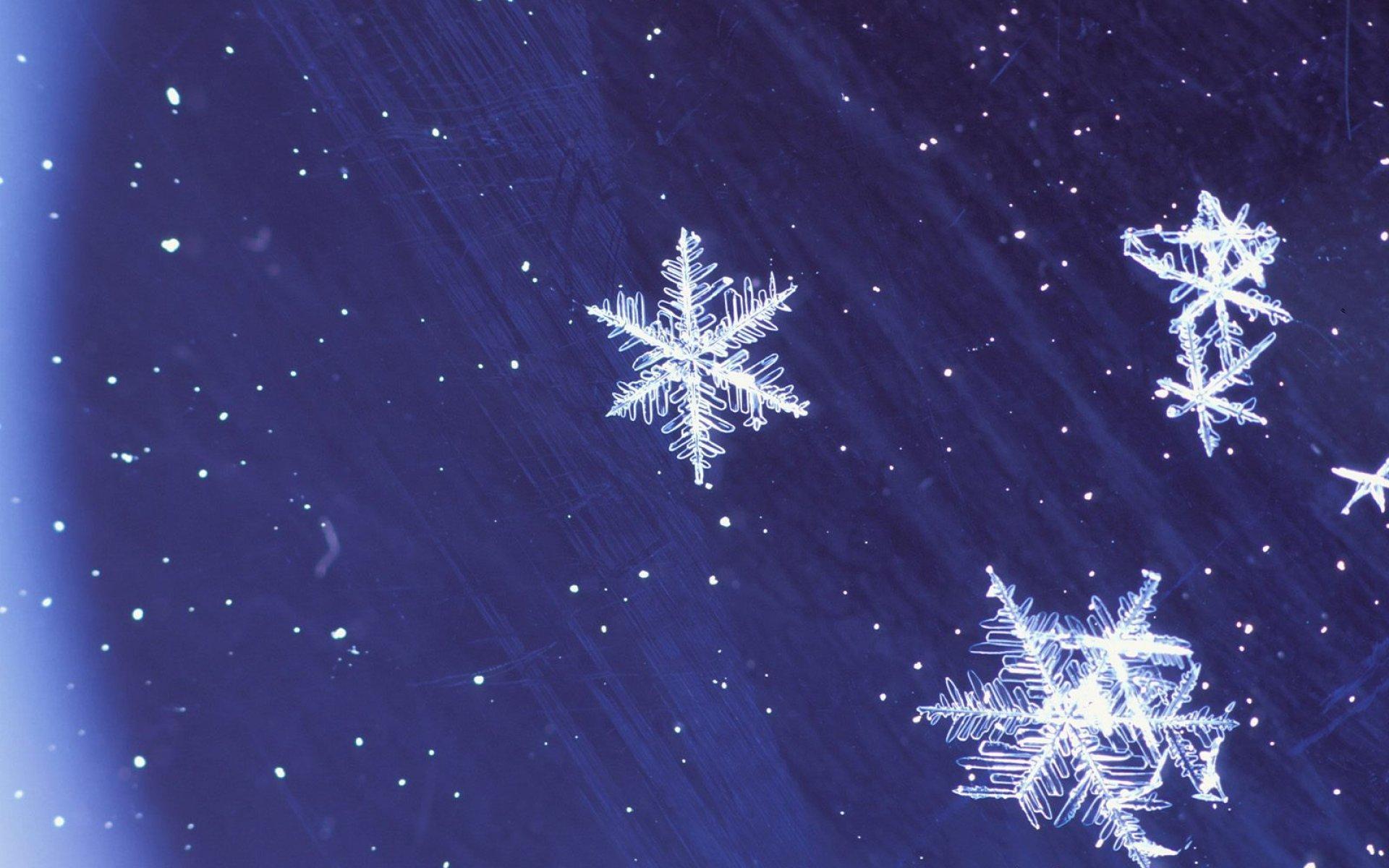 Скачать обои снежинки на стекле 1920x1200