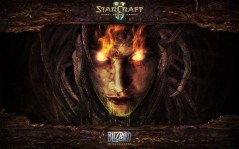 Starcraft 2: heart of the swarm / 1920x1200