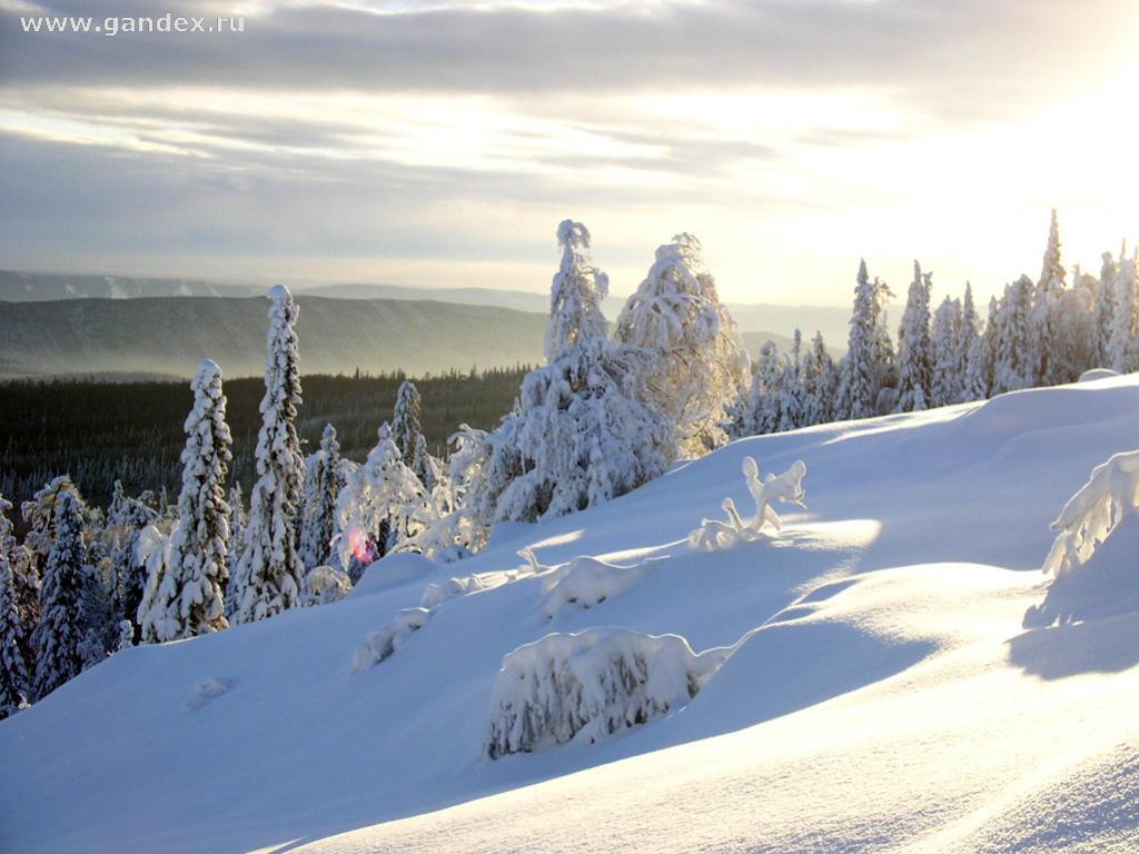 Картинки 1024х768 на рабочий стол зима природа