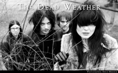 The dead weather / 1920x1200