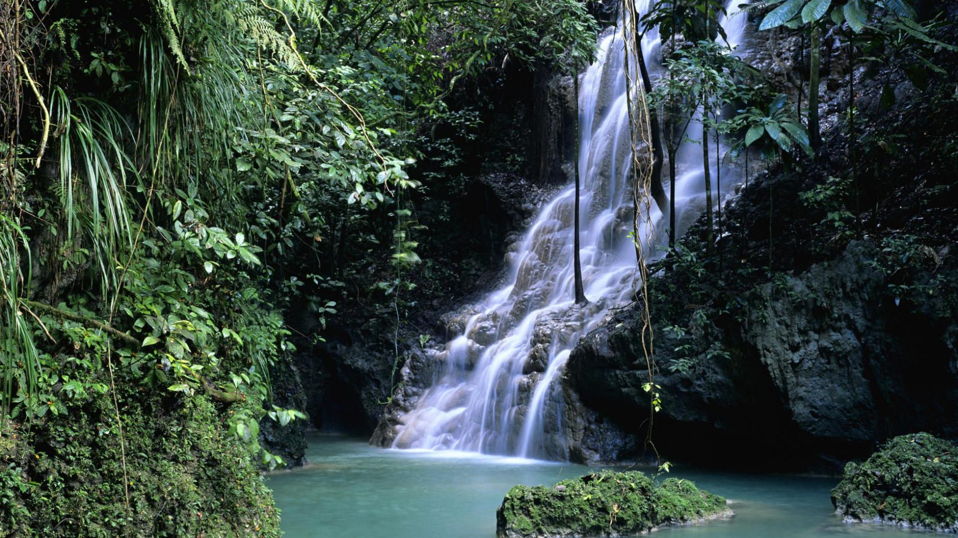Ein wasserfall im regenwald 1920x1080 wallpaper pictures for desktop picture to pin on pinterest - Wallpaper pictures ...