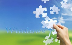 Windows 7 Business / 1920x1440